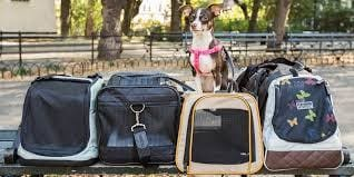 You and Your Pooch:  Get the Right Pet Carrier for a Match Made in Heaven