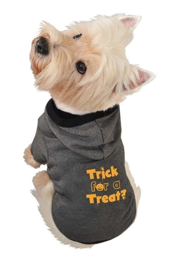 Halloween Dog Products