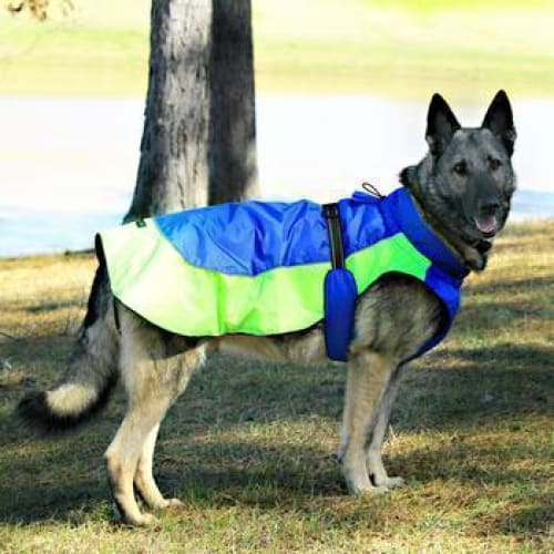 Alpine All Weather Dog Coat - Blue and Green - 3