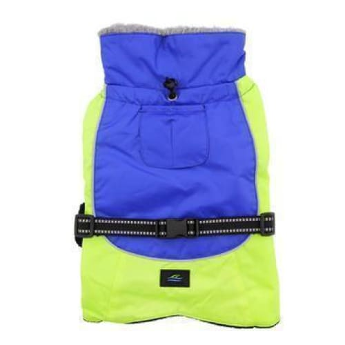 Alpine All Weather Dog Coat - Blue and Green - 5
