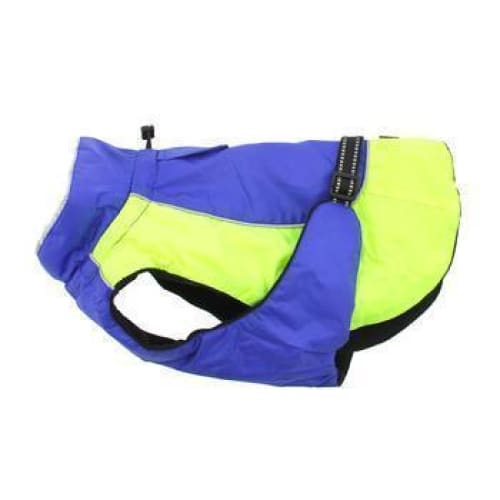 Alpine All Weather Dog Coat - Blue and Green - 1