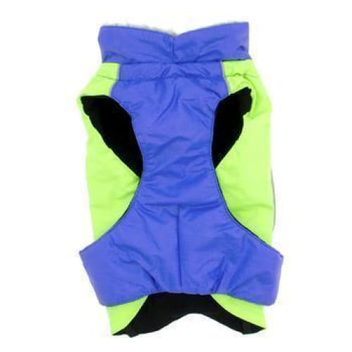 Alpine All Weather Dog Coat - Blue and Green - 4