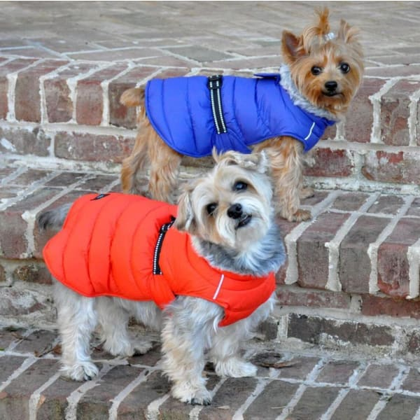 Alpine Extreme Weather Puffer Dog Coat - Orange Coral - 1