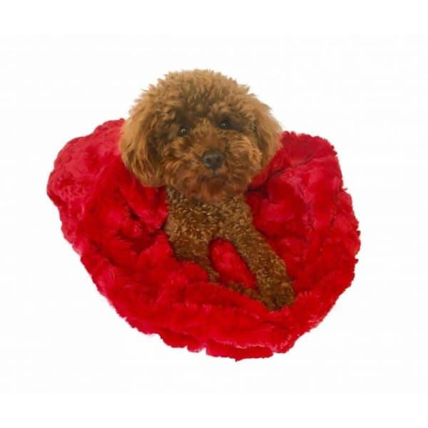Bella Cozy Red for Dogs - 1