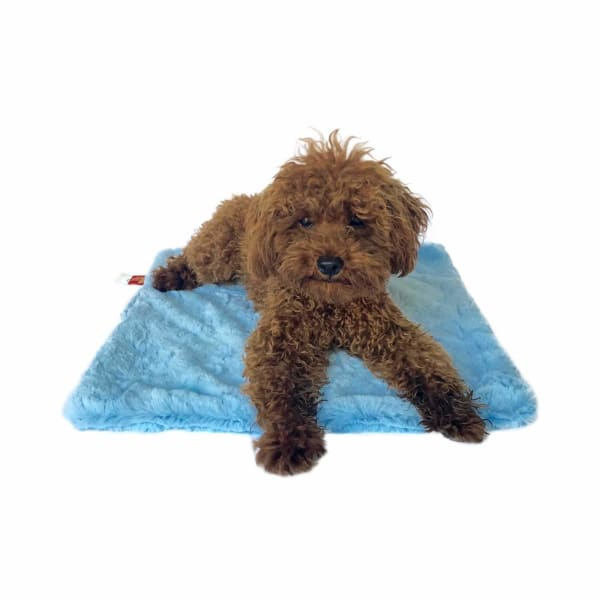 Bella Luxury Minkie Binkie Dog Blanket in Light Blue - 1
