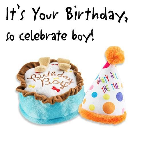 Birthday Boy Plush Dog Toy Bundle - Plush Dog Toys - 1