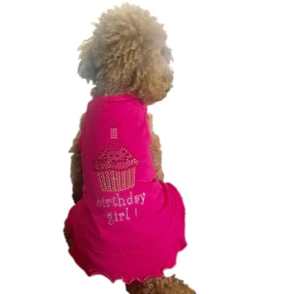 Birthday Girl Cupcake Dress for Dogs - Dog Birthday - 1
