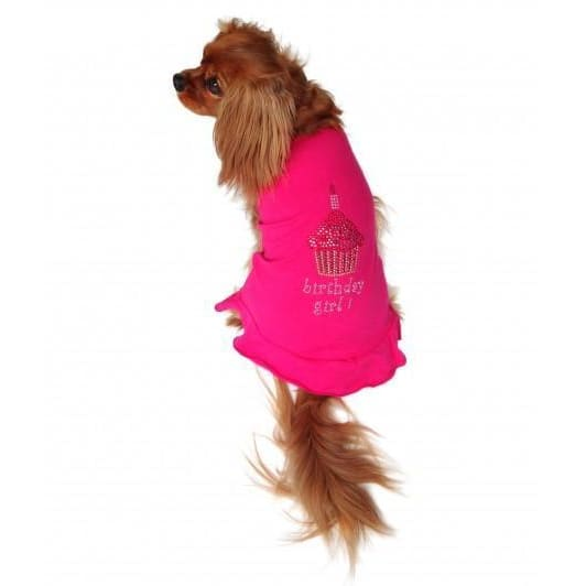 Birthday Girl Cupcake Dress for Dogs - Dog Birthday - 2