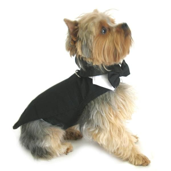 Black Dog Harness Tuxedo with Tails Bow Tie and Cotton Collar - holiday dog harnesses - 2