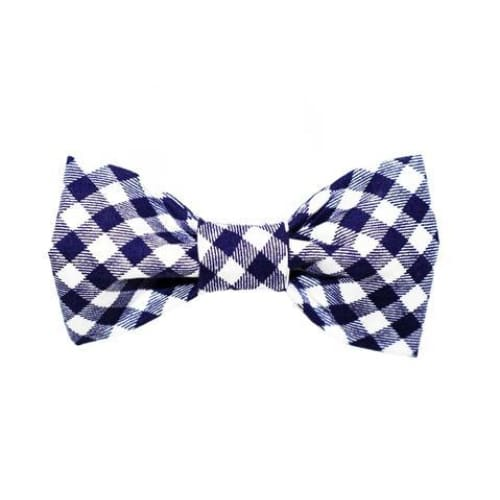 Blue/White Gingham Dog Bow Tie - 1