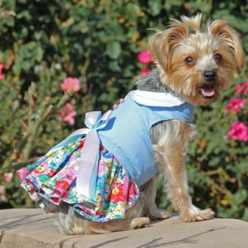 Blue and White Pastel Pearls Floral Dog Dress with Matching Leash - Dog Dresses - 1