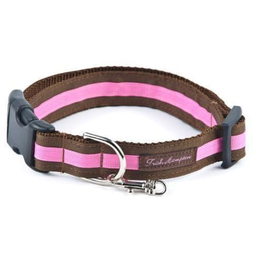 Double Ribbon Stripe Collection Dog Collar Chocolate/Hot Pink - 1