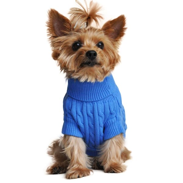 Combed Cotton Cable Knit Dog Sweater - Riverside Blue - Luxury & Designer Dog Sweaters - 2