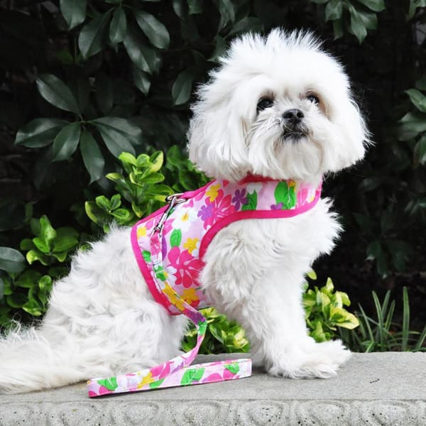 Dog Harness with Leash Pink Hawaiian Floral - Soft Dog Harnesses - 1