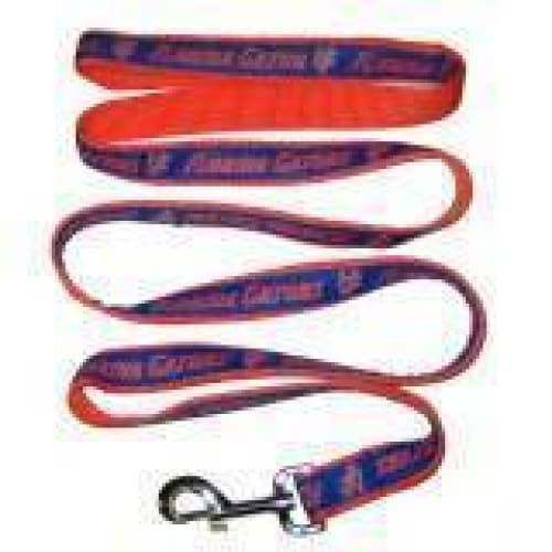 Florida Gators Dog Leash Ribbon - College Dog Leashes - 1