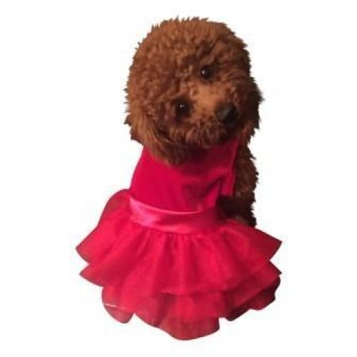 For The Holidays Party Girl Red Velvet Fufu Tutu for Dogs - 1