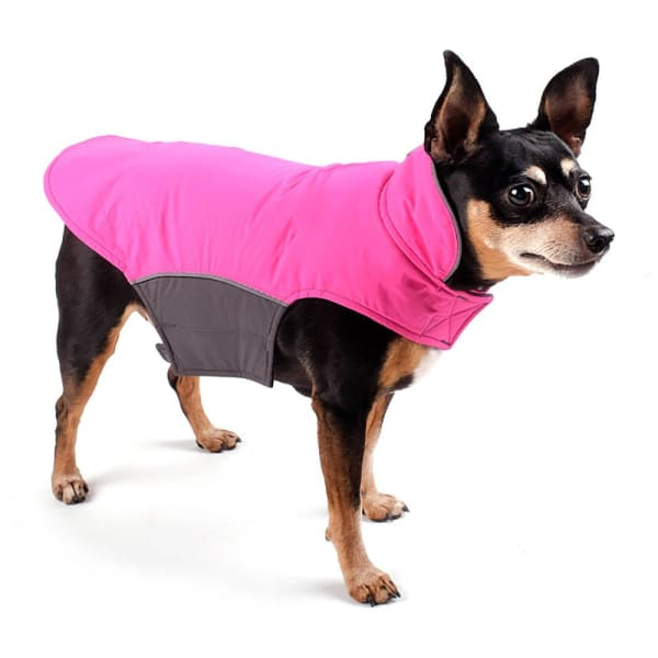 Fuchsia Apex Jacket for Dogs - Dog Jackets & Coats - 1