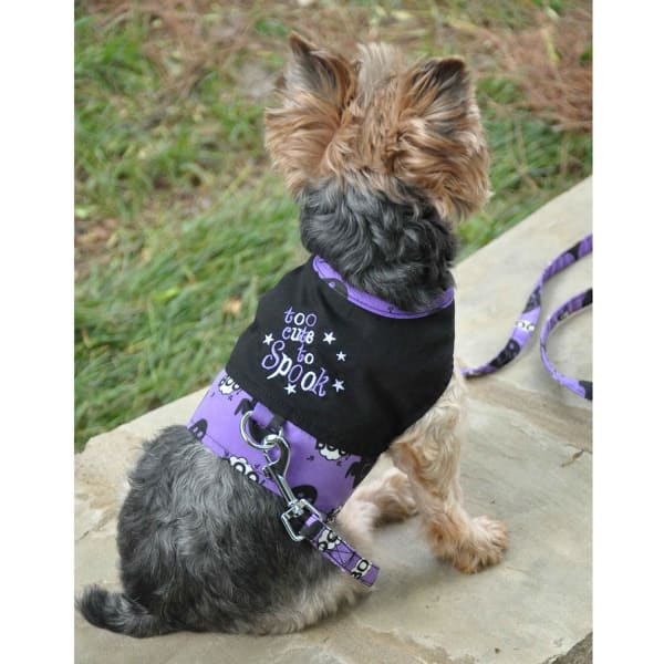 Halloween Dog Harness - Too Cute To Spook - Halloween For Dogs - 1