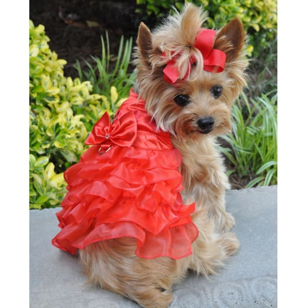 Holiday Dog Harness Dress - Red Satin - Christmas For Dogs - 1