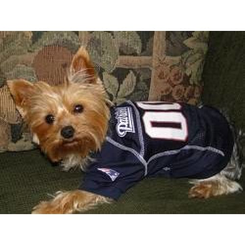 New England Patriots Dog Jersey with Grey Trim - 2