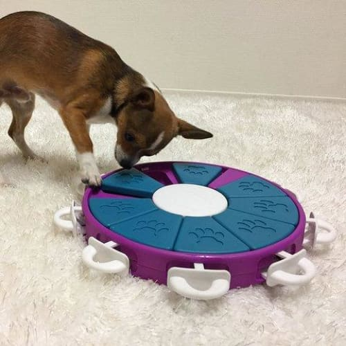 Nina Ottosson Dog Twister Interactive Toy - Dog Puzzles and Games - 2