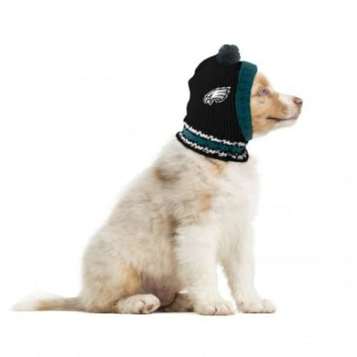 Philadelphia Eagles Dog Knit Hat for Dogs - 1