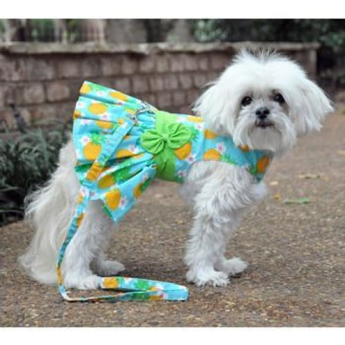 Pineapple Luau Dog Harness Dress with Matching Leash - Dog Dresses - 2