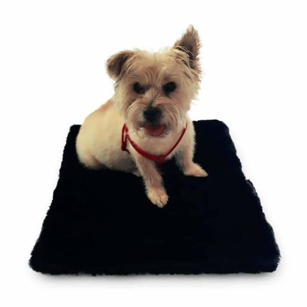 Plush Magic Mat for Dogs Black Mink - Dog Crate Mats - 1