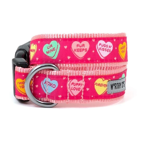 Puppy Love Dog Leash - Valentine's Day For Dogs - 2