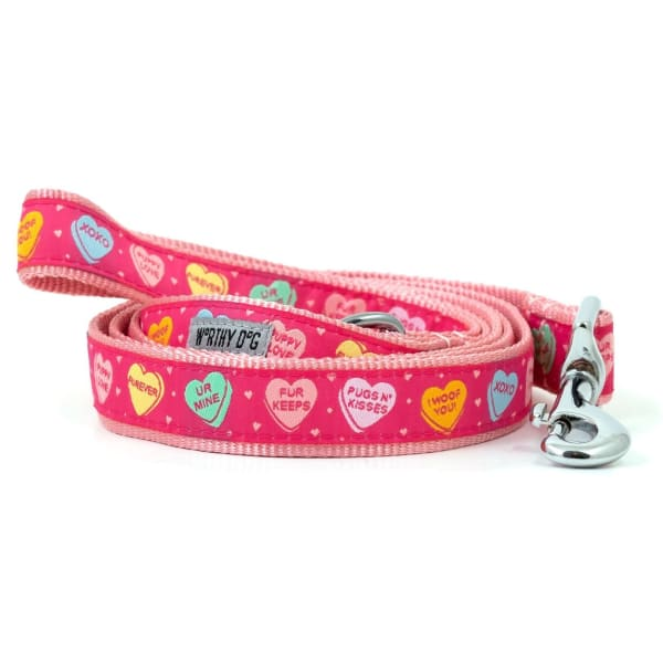Puppy Love Dog Leash - Valentine's Day For Dogs - 1
