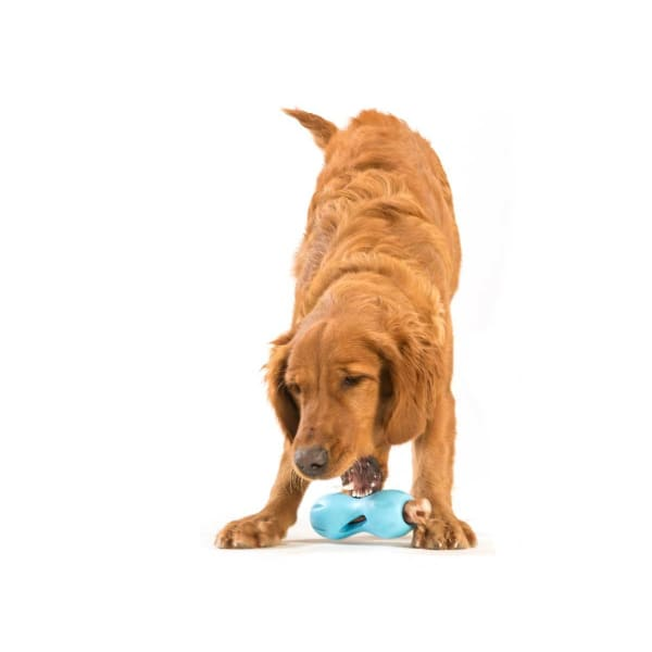 Qwizl Treat Dog Toy - Indestructible & Tough Dog Toys - 5