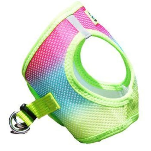 Rainbow Ombre Choke Free Dog Harness - Soft Dog Harnesses - 4