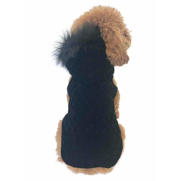 Rodeo Quilted Velvet Dog Coat - 1