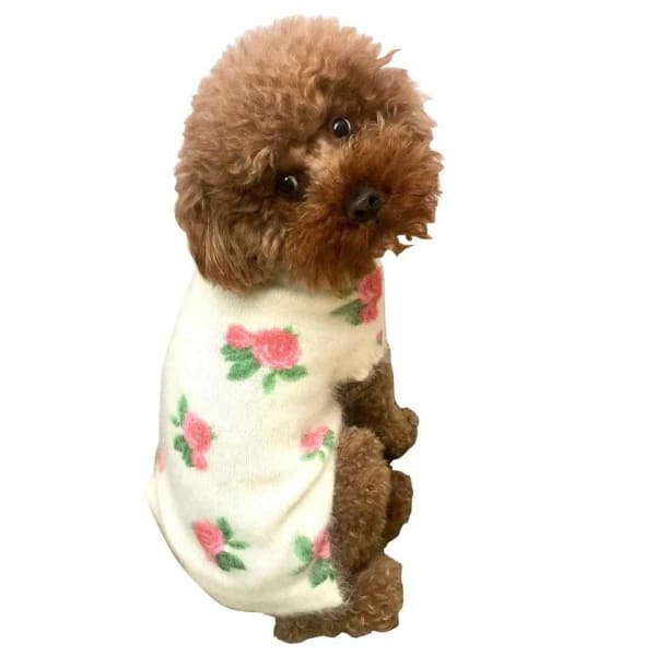 Roses are Red Sweater for Dogs - Luxury & Designer Dog Sweaters - 1