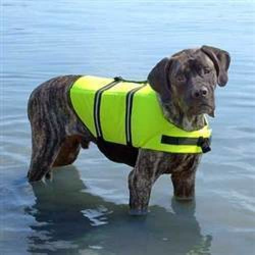 Safety Neon Yellow Dog Life Jacket - 1