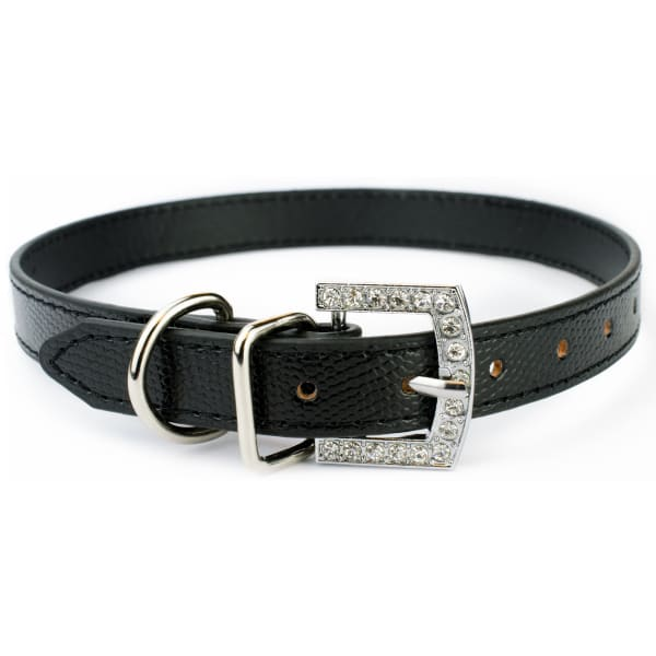 Black Collar for Large Dogs