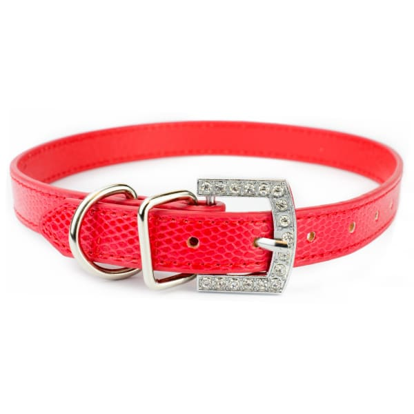 Biggest Dog Collars in Red