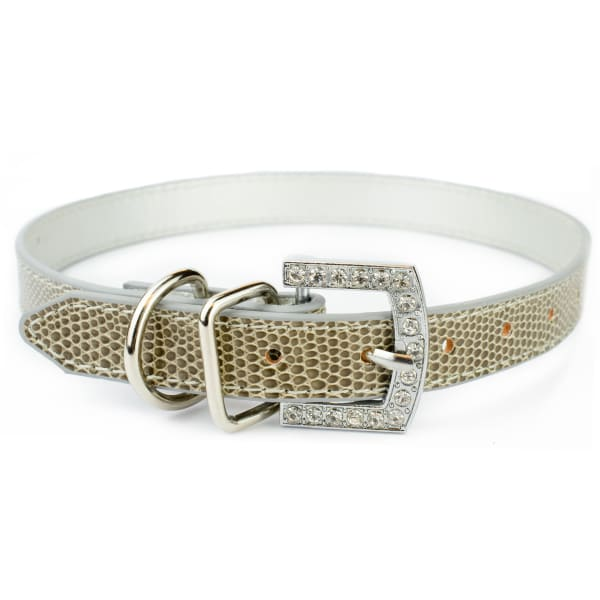 Grey Custom Big Dog Collar