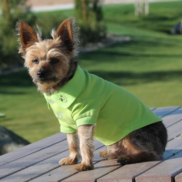 Solid Dog Polo - Green Flash - Dog Tee Shirts - 1