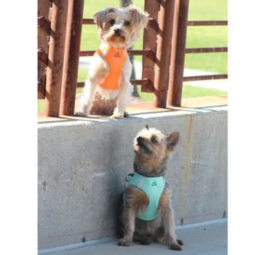 Solid Ultra Choke-Free Mesh Dog Harness Teal - Soft Dog Harnesses - 2