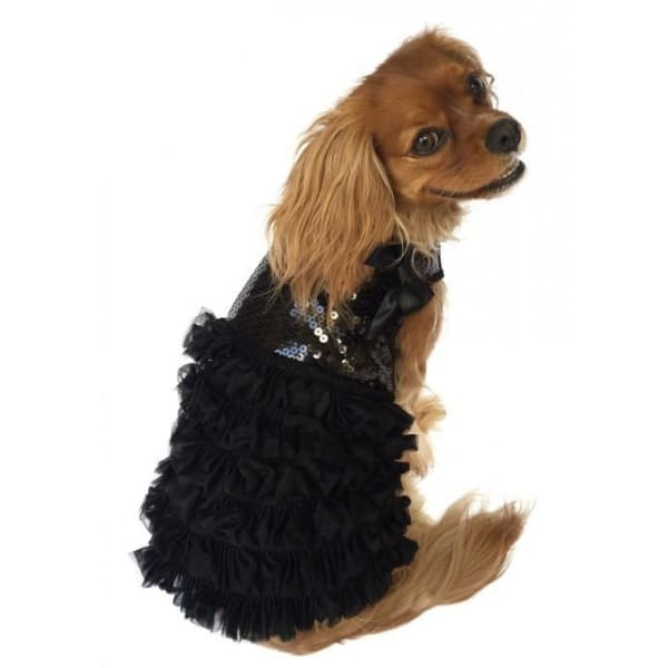 Some Like it Hot Dress for Dogs in Black - 1