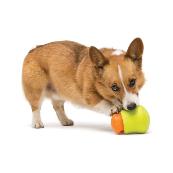 Toppl Treat Dog Toy - Indestructible & Tough Dog Toys - 3