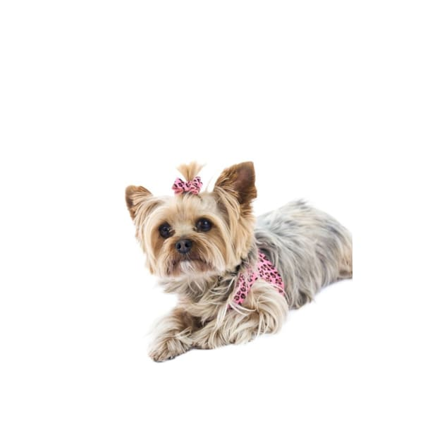Ultrasuede Hair Bows for Dogs - Dog Hair Bows - 2