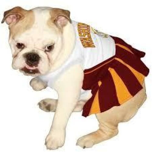 Washington Redskins Cheerleader Dog Dress - 2