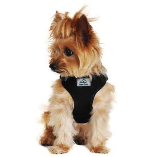 Wrap and Snap Choke Free Dog Harness Black - Soft Dog Harnesses - 1