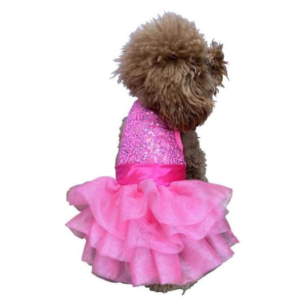 Zsa Zsa Dog Tutu Dress for Dogs Hot Pink - Dog Dresses - 2