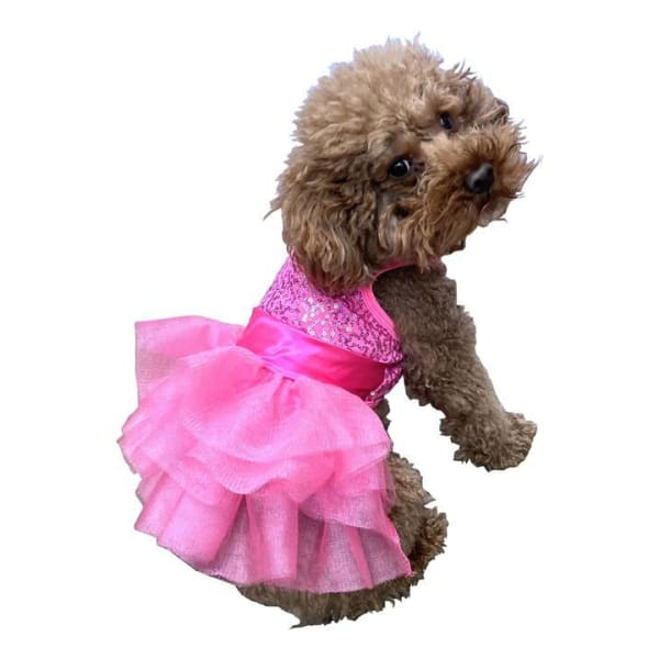 Zsa Zsa Dog Tutu Dress for Dogs Hot Pink - Dog Dresses - 1