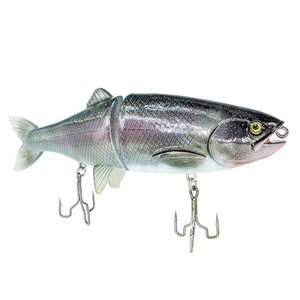 MarTease Custom Swimbait Related Trapper Tackle LLC Rainbow Trout