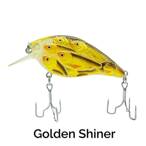 Trapper Schooling Squarebill Related Trapper Tackle LLC Golden Shiner