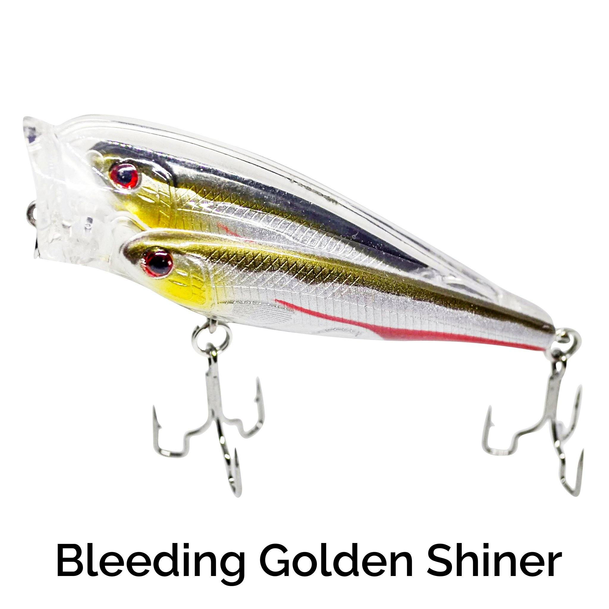 Schooling Trap-R Related Trapper Tackle LLC Bleeding Golden Shiner